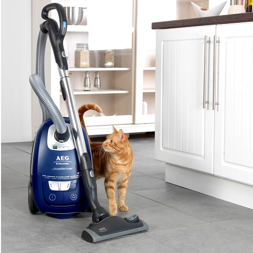 Should you choose an upright or canister vacuum cleaner ?